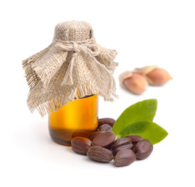 Jojoba Oil, leaves, seeds with oil.
